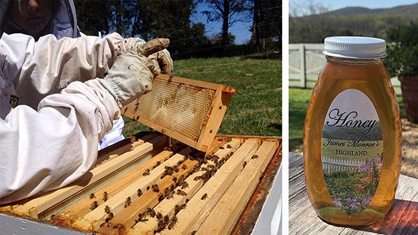 beekeeper and jar of honey