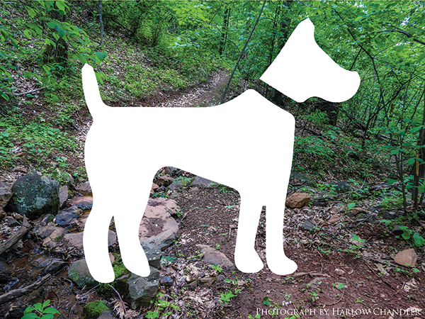 Hiking trail with dog icon